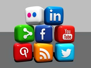 What Use Is Social Media?