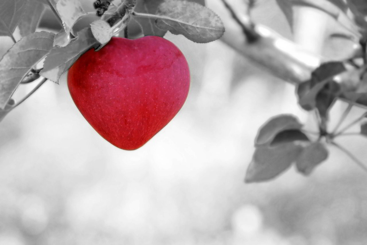 Fall In Love And Out Of Love!