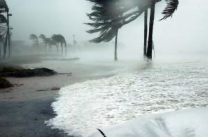 On Hurricane Irma