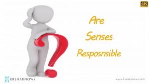 Are Senses Responsible? – Teachings In Short