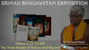 Canto 11: Ch25 Part01- Srimad Bhagavatam